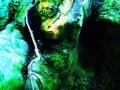 Art by Nicole Kudera, Gremlin Tree