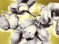 Art by Nicole Kudera, Golden Hazelnuts