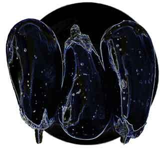 Aubergines, original art by Nicole Kudera