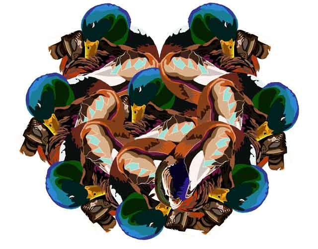 Mallard Heap, original art by Nicole Kudera