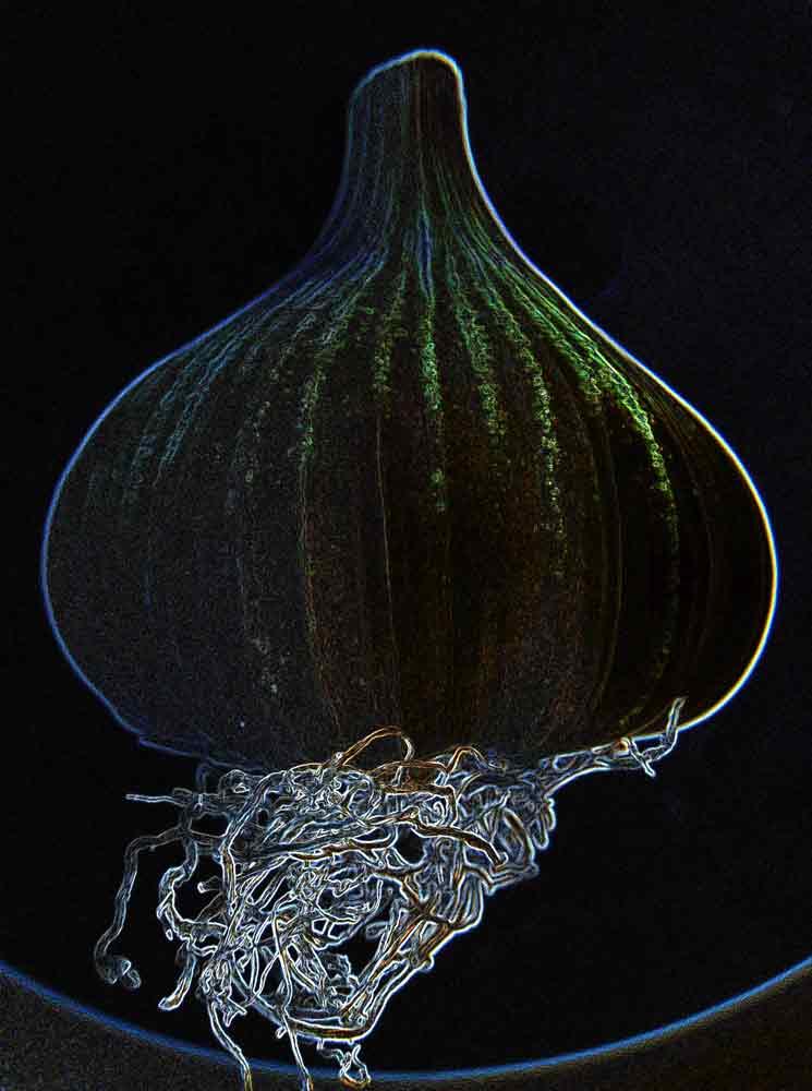 Art by Nicole Kudera, Neon Garlic