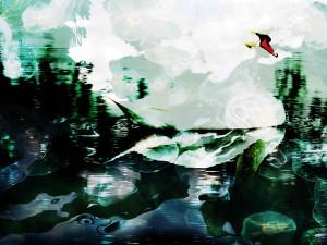 Swan Mirror, photoart by Nicole Kudera, 2014